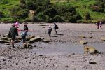 DSC_0048 crossing the Whangawehi River at king low tide